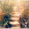 Steps II