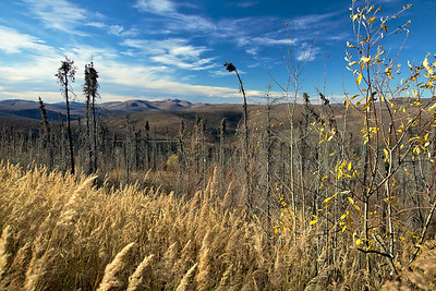 September - The view from US Creek Road