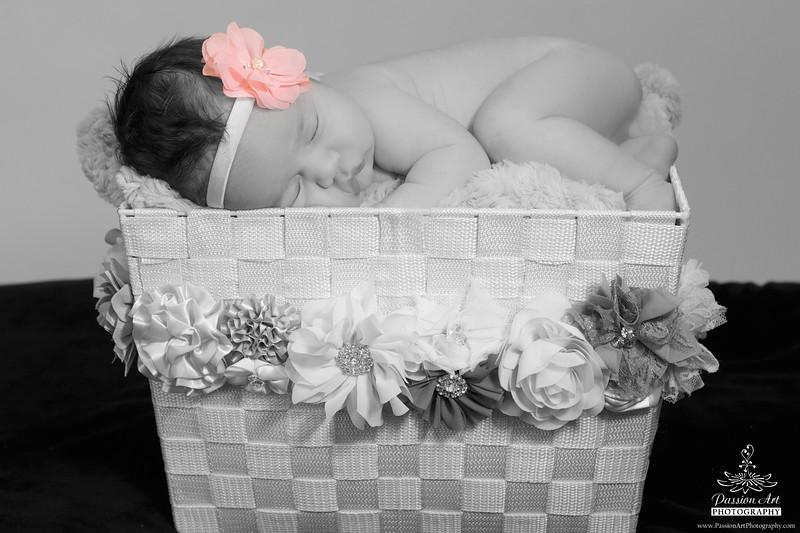 Baby Girl | Newborn