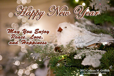 Happy New Year! Wishing everyone a healthy and happy 2013!  ©  2012 Colleen M. Griffith. All Rights Reserved.  This material may not be published, broadcast, modified, or redistributed in any way without written agreement with the creator.  This image is registered with the US Copyright Office. www.colleenmgriffith.com www.facebook.com/colleen.griffith  Posted 01 January 2013