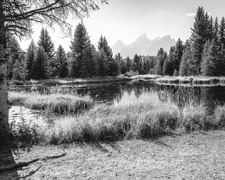 Schwabacher's Landing - Black and White