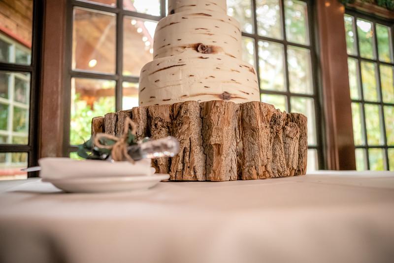 20181006-Benjamin_Peters_&_Evelyn_Calvillo_Wedding-Log_Haven_Utah (3581)LS1