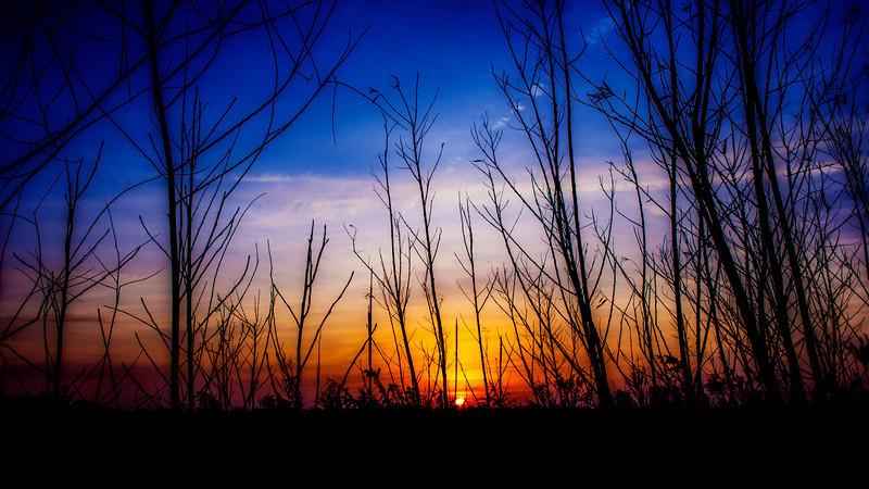 Sunrise, Lockport, Illinois
