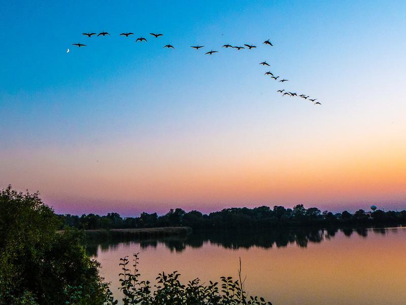 Sunset with birds flying overhead,  Lake Renwick Preserve, Plainfield, Illinois