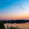 Sunset with birds flying overhead,  Lake Renwick Preserve, Plainfield, Illinois