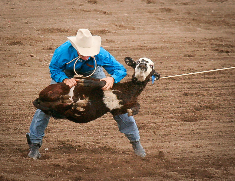 Rodeo, Cody, Wyoming