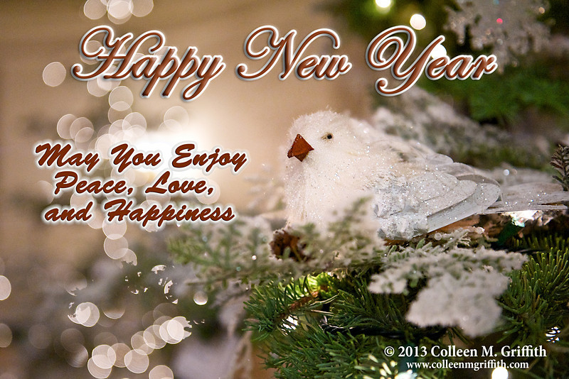 "Happy New Year!<br /> Wishing everyone a healthy and happy 2013!<br /> <br /> ©  2012 Colleen M. Griffith. All Rights Reserved.  This material may not be published, broadcast, modified, or redistributed in any way without written agreement with the creator.  This image is registered with the US Copyright Office.<br />  <a href=""http://www.colleenmgriffith.com"">http://www.colleenmgriffith.com</a><br />  <a href=""http://www.facebook.com/colleen.griffith"">http://www.facebook.com/colleen.griffith</a><br /> <br /> Posted 01 January 2013"