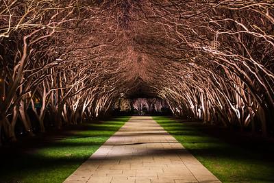 1501_Arboretum_153
