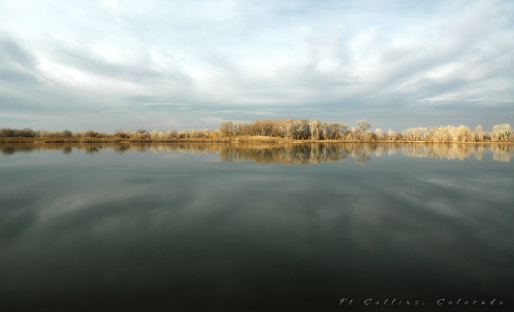 Winter reflection of a small lake in Fort Collins, Colorado