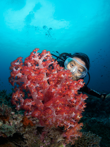 Softcoral and Marcela