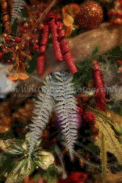 Christmas at Lewis Ginter Botanical Gardens