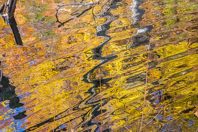 wavy autumn reflections