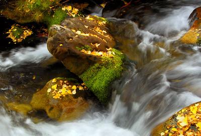 McGee Creek