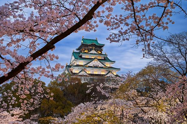 The Harmony of Spring    Osaka Japan