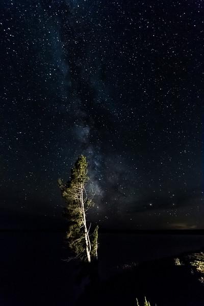 Yellowstone Lake Milky Way