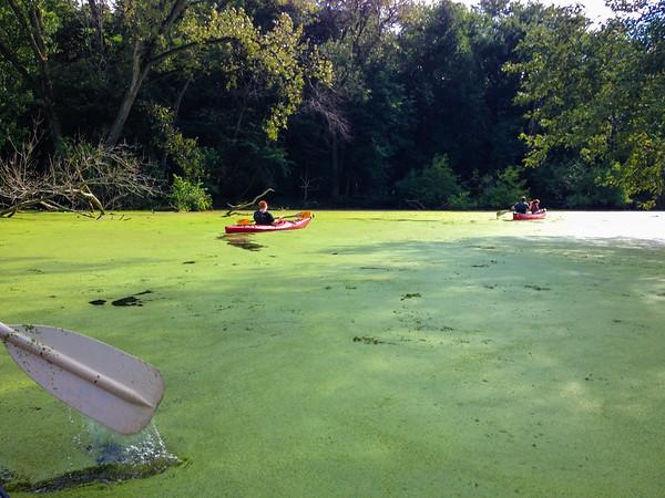Emerald Lagoon