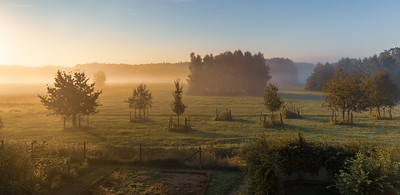 Lovely Summer morning in the middle of Germany