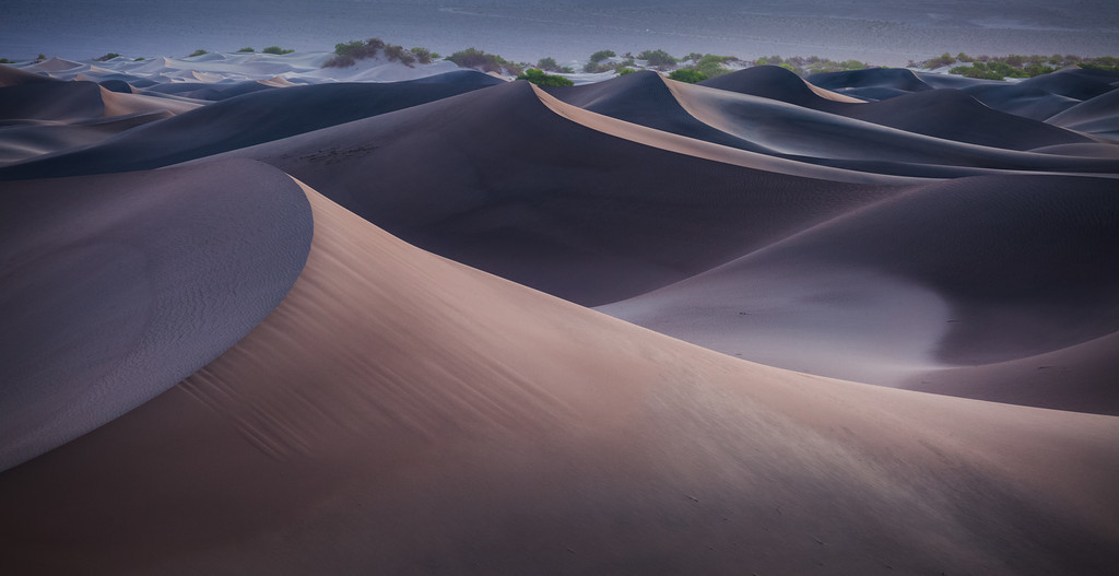 Dawn in the Dunes