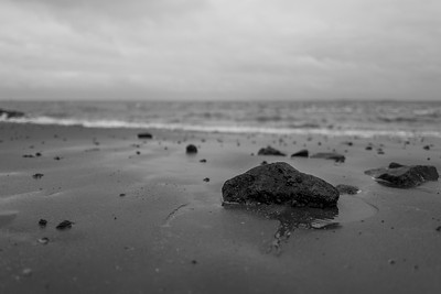 rocks at the German coastline in Wilhelmshaven