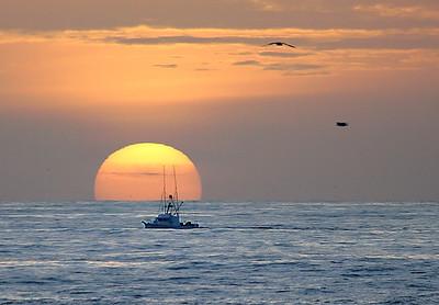 maverick sunset web0083