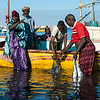 Delivering the catch, Bosaso fishing port, Puntland
