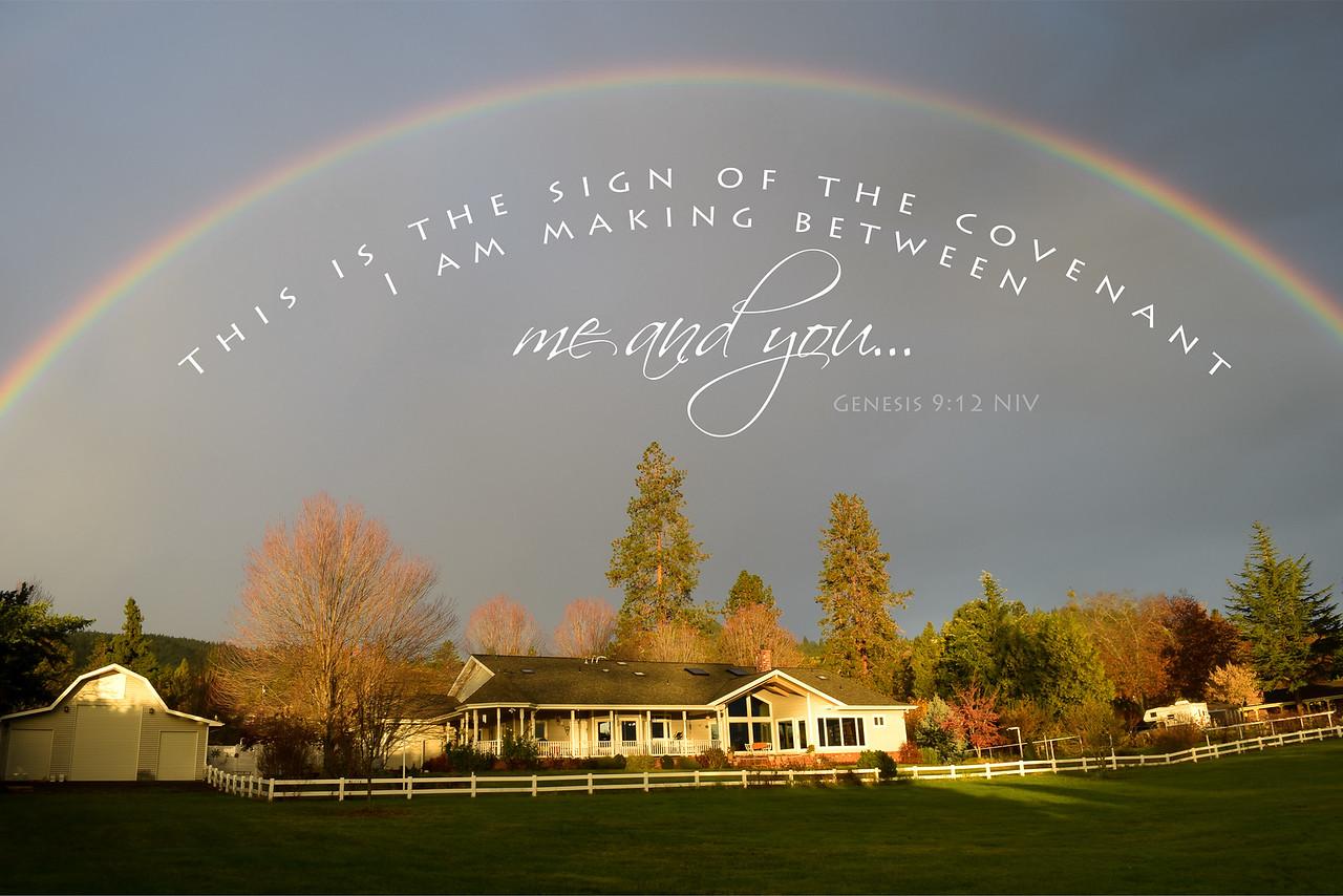 Genesis 9:12
