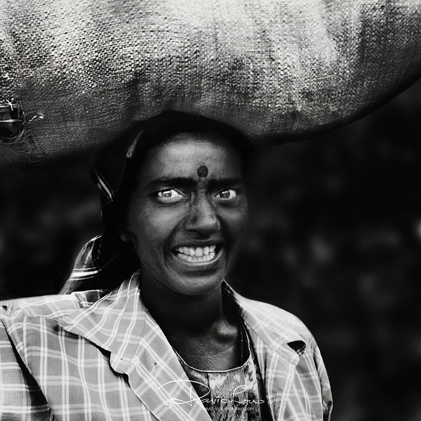 Tea leaf picker - They were paid by the weight of leaves picked. Sri Lanka accounts for 23% of the total world export.