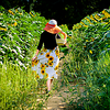"""""""Sunflowers end up facing the sun, but they go through a lot of dirt to find their way there."""""""