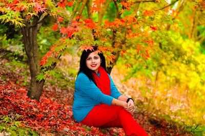 Amidst dazzling Fall Color of Gibbs Garden - Ballground, GA - USA