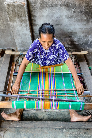 Weaver around Tetebatu