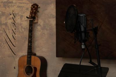 CER_0169 mic