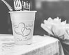 20180519WY_WEDDING_Laure_Minow_&_Buddy_Roswell (357)moose-3