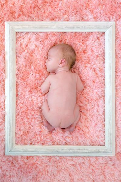 Penny Rose McDonald Newborn Shoot
