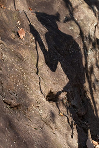 Belaying Shadows, North Carolina