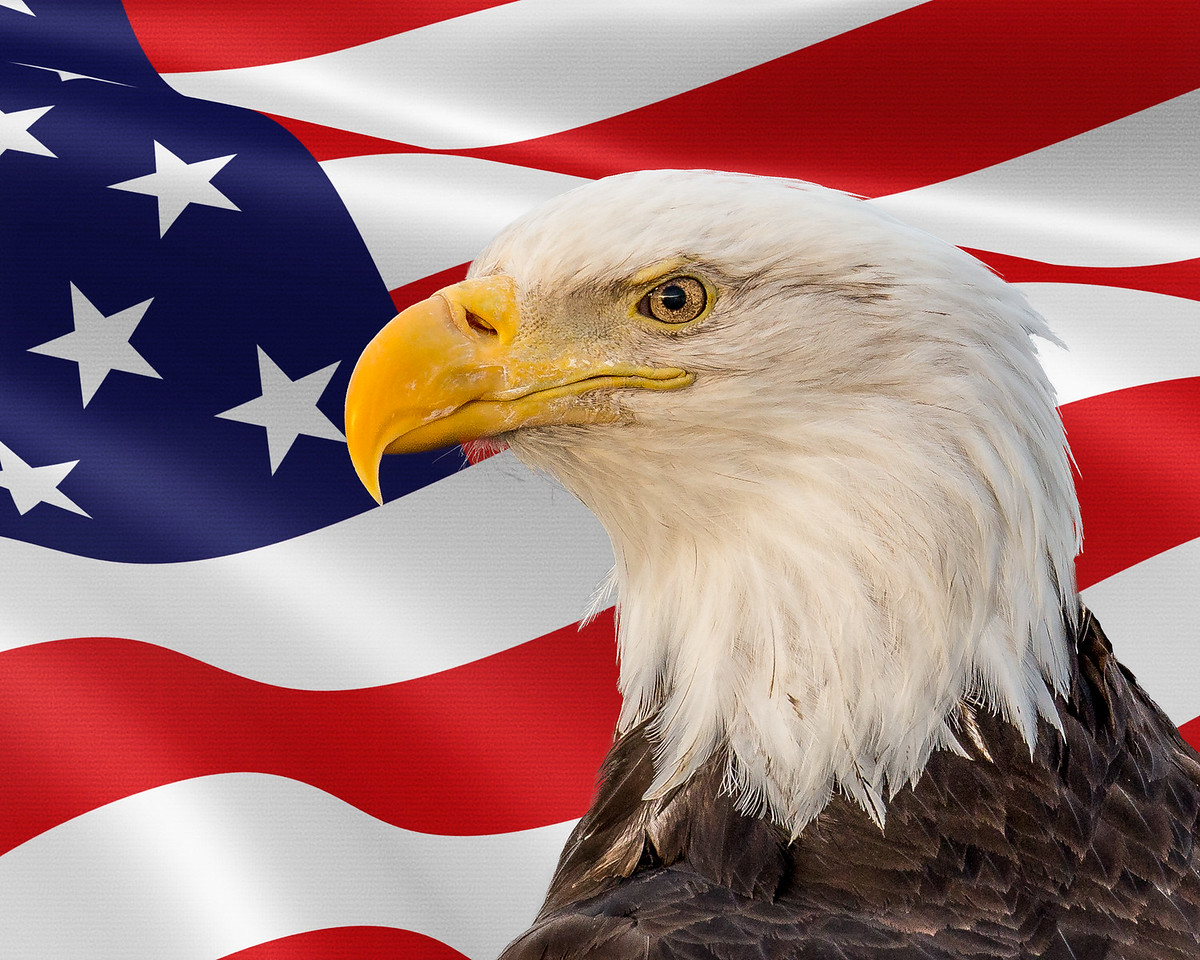 The Iconic American Image