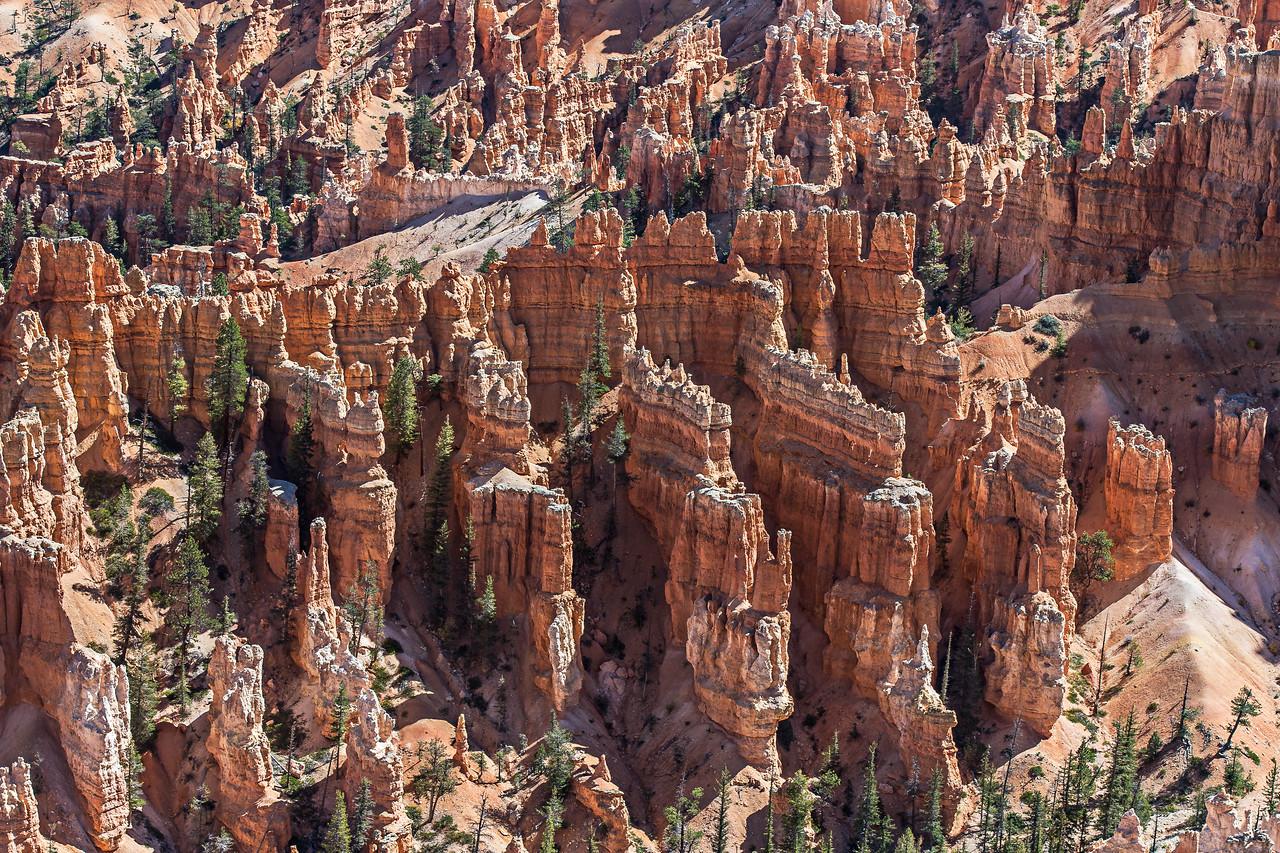 Hoodoos, Bryce Canyon, Utah