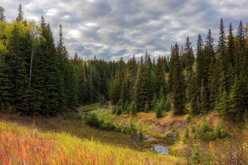Fall Colors in Alberta