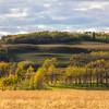 Eden Valley Farm