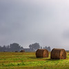Fog Over Hay Bales