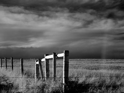 Print-Black & White Gallery