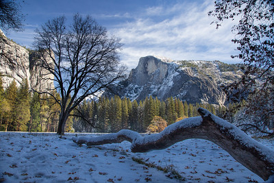 A Year In Yosemite Valley