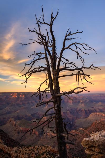 AZ Grand Canyon