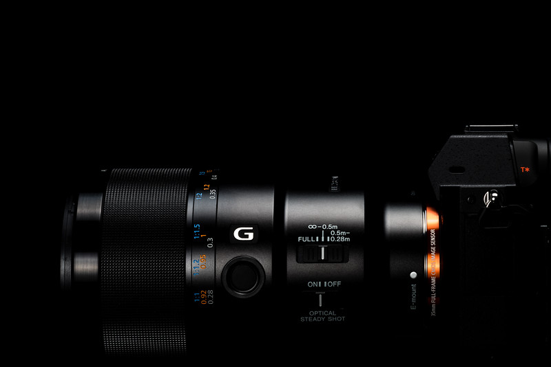 α7R II + FE 90mm F2.8 Macro G OSS