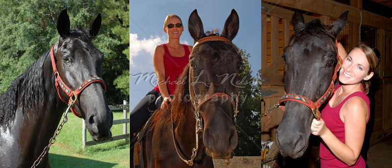 """<font size=4>Week 12  (Mike) - """"Misty and Midnight"""" <font size=3> My friend and fellow photographer, Misty Beams, asked me to photograph her and her horse """"Midnight."""" It was a lot of fun. Not only is Midnight a beautiful horse, but my wife Carol (who loves horses) also got to ride him that day."""