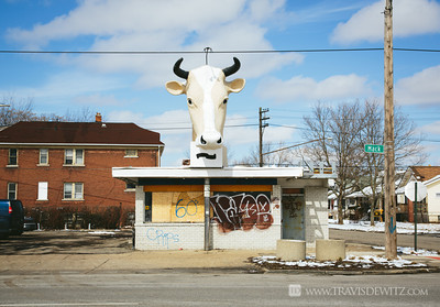 detroit_abandoned_business_cow_head_statue_mack_street