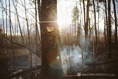 germann_road_forest_fire_smoke_melted_no_trespassing_sign