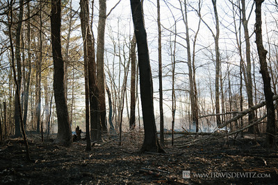 germann_road_forest_fire_smoking_woods