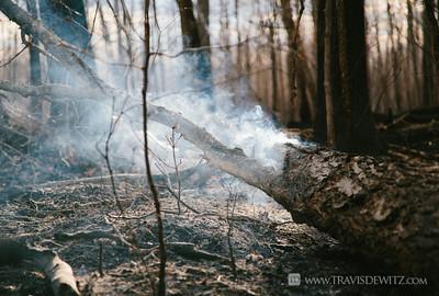 germann_road_forest_fire_smoking_log
