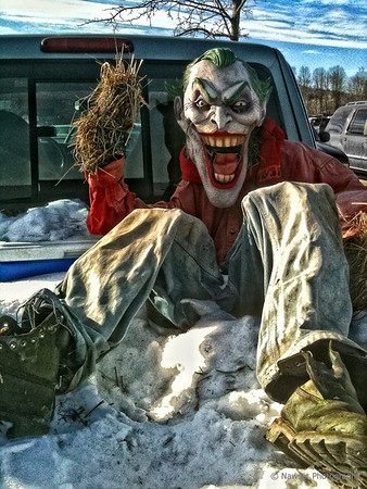 """Random Evil (Day 351)<br /> <br /> As I am sure you will agree, nothing screams that you love Christmas more than driving around with a satanic, clown scarecrow in the back of your pickup. The least they could have done was toss a Santa hat on him in the spirit of the season.<br /> <br /> Little iPhone grab shot in the parking lot of the local Home Depot; did a bit of tone mapping in post to give it a slight HDR vibe. <br /> <br /> I guess I will submit this as a bonus """"You Might Be A Redneck When …"""" shot.  You are so very welcome.<br /> <br /> (2009-12-21 12:38pm)"""