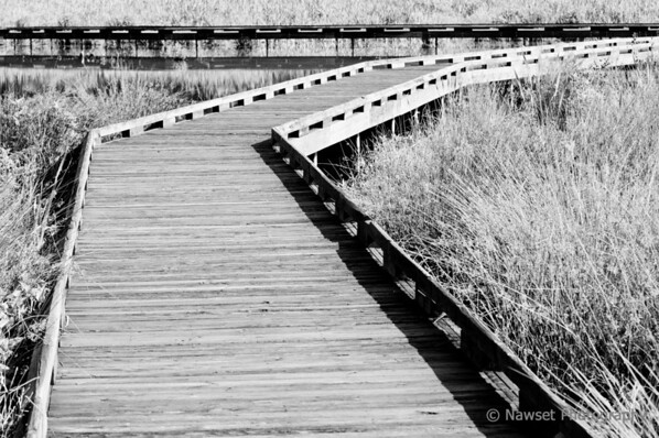 """Boardwalk (Day 147)  To get back to the shot of the day, click <a href=""""http://www.nawset.com/gallery/7032225_oFapa#553349444_XpSLa"""">here</a>.   (2009-05-31 9:18am)"""